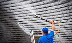 $1,080 for Non-Pressure Roof Cleaning