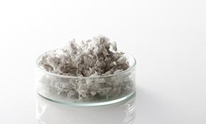 $250 for Limited Asbestos Sampling