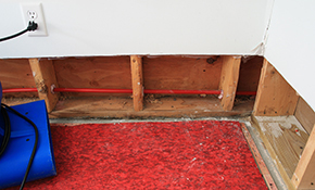 $2,849 for Full-Service Crawlspace Encapsulation -- Includes Materials and Labor