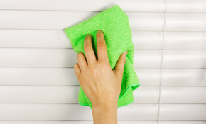 $120 for Cleaning Faux / Wood Blinds, Interior or Exterior Light Fixtures, Ceiling Fans, Mirrors, and Shower Doors (Member Choice of Up to 8 Items)