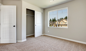 $139 for 2 Rooms and a Hallway of Carpet Cleaning