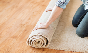 $2,995 for 800 Square Feet of Carpet and Pad Installation