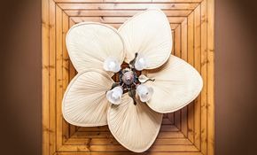 $146.38 for a Ceiling Fan Installation