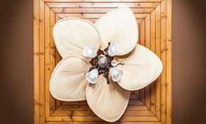 $126 Ceiling Fan Installation