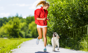 $85 for 1 Week of 30-Minute Dog Walks