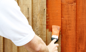 $599 for Up to 600 Square Feet of Fence Staining with Solid Color or Semi-Trans Oil Stain - Coat to Cover
