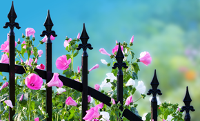 $900 for $1,000 Credit Toward Wrought Iron Fence Installation