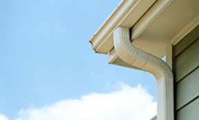 $39 for Gutter Protection System Consultation and $100 credit