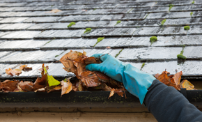 $109 for a Two-Story Home Gutter Cleaning