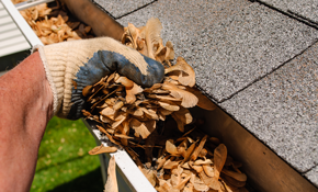 $112.50 for Gutter Cleaning and Roof Debris Removal