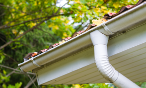 $105 for 6-Point Gutter Cleaning Including New Downspout Screens