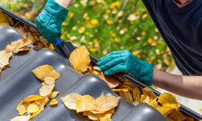 $249 Gutter Clean and New Gutter Screens Installation