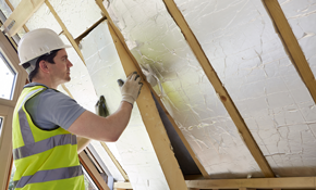 $49 for an Attic Inspection, Plus an Insulation and Ventilation Analysis Including Project Credit
