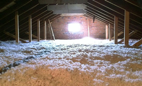 $1,250 for Up to 1,000 Square Feet of R-30 Blown-In Insulation
