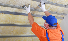 $250 for an Attic Inspection, Plus an Insulation and Ventilation Analysis