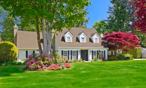 $229 for up to 8 Hours of Landscaping Services, (28.44% Savings), Reserve Now for $80.15