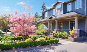 $1,484 Landscaping Curb Appeal Package Including Plants, Mulch and Installation
