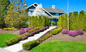 $250 for Mulch Delivery and Installation, Reserve Now for $12.50