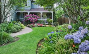 $180 for 1 Cubic Yard of Premium Mulch Delivery and Installation
