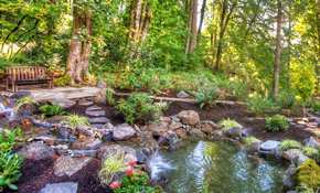 $495 for Complete Pond Cleaning