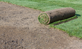 $210 for a Pallet of Fresh Sod Installation