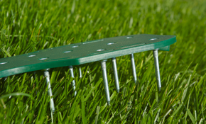 $269 for Lawn Aeration and Overseed