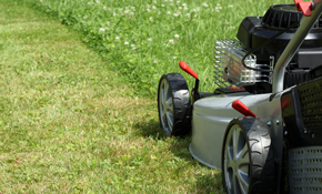 $29.50 for Lawn Mowing Up to 10,000 Square Feet