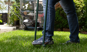 $199 for Lawn Aeration, Overseed, Fertilization and Lime Treatment