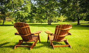 $150 for 4 Hours or Lawn/Yard Maintenance or Clean Up