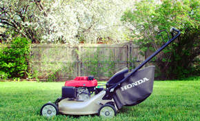 $59 Fall Special for Lawn Mower Winterization or Snowblower Wake-Up
