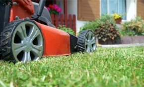 $235 for Snow Blower and Lawnmower Tune-Up