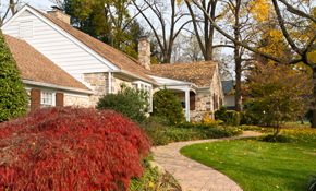$249 for 4 Hours of Yard Clean-Up Plus Free Yard Mowing