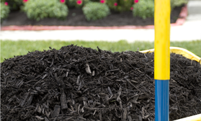 $110 for 1 Cubic Yard of Premium Mulch Delivery and Installation