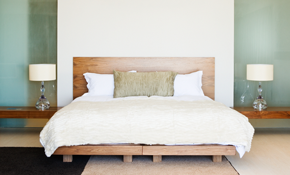 $900 for Bed Bug Heat Treatment - Up to 1,000 Square Feet