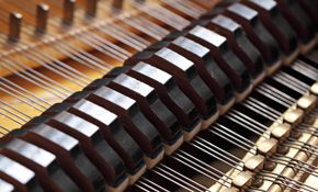 $110 for Piano Tuning