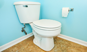 $309 for a New Toilet Installation