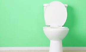 $71 for a Toilet Tune-Up and Home Plumbing Inspection