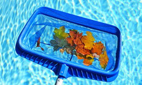 $90 for 1 Month of Pool Maintenance