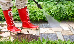$150 for 1,500 Square Feet of Driveway and Sidewalk Pressure Washing
