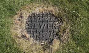 $142 for Camera Inspection of Sewer Line