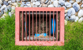 $250 for Main Sewer Line Cleaning
