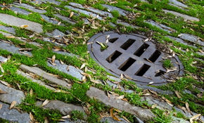 $900 for a $1,000 Credit Toward Sewer Line Repair