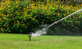 $1,700.00 for a 4-Zone Sprinkler System Installation, Including Design Consultation