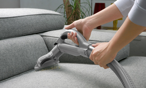 $225 for Upholstery Cleaning