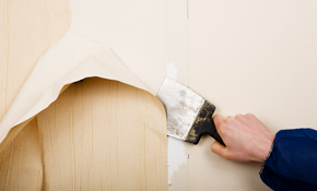 $170 for 2 Hours of Interior Painting or Wallpaper Removal