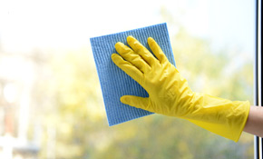 $270 for Cleaning 20 Windows, Screens, Sills, and Frames
