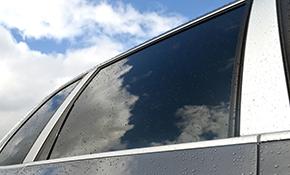 $179 Carbon Based Auto Window Tinting
