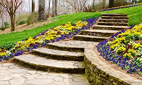 $265 for 8 Hour Spring Landscape Clean-Up
