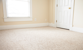 "$900 for 350 Square Feet of Shaw ""Something Sweet"" Nylon Carpet, Premium Cushion and Professional Installation"
