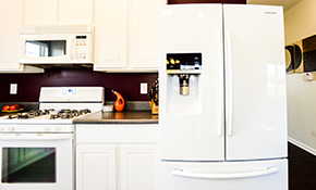 $225 for Kitchen and Laundry Appliance Tune-Ups and Cleaning, With a Garbage Disposal Inspection